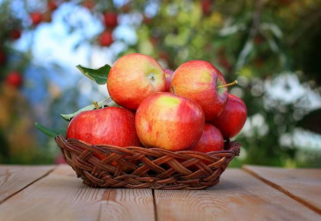 りんごを収穫します。古い木製のテーブルに枝編み細工品の花瓶に赤いリンゴ Premium写真