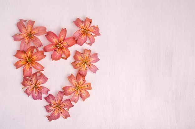 Розовая лилия цветы в форме сердца на белом фоне деревянные. день святого валентина Premium Фотографии