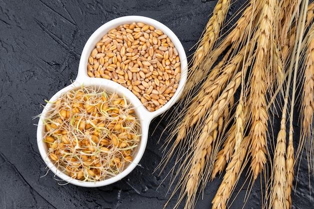 Сухие и проросшие зерна пшеницы в белой тарелке с колосьями пшеницы. органические зерна полезны для салатов, здоровой пищи. крупный план Premium Фотографии