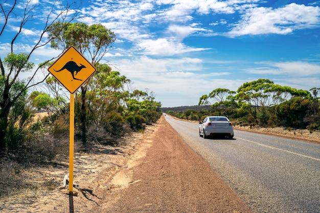 Сельская местность с желтым кенгуру Premium Фотографии