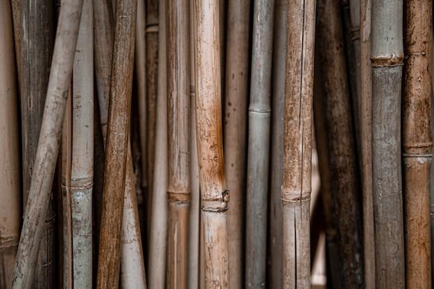 Естественный фон с большим количеством бамбуковых палочек. Бесплатные Фотографии