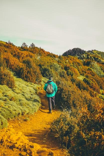 自然の中を歩くハイカー 無料写真