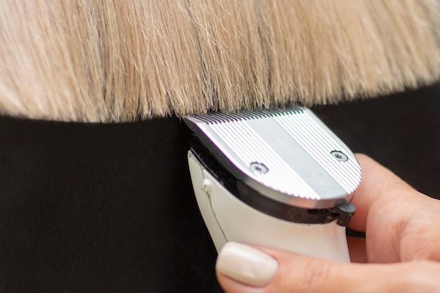 Парикмахер с машинкой для волос. отрезать секущиеся волосы с помощью машинки для стрижки. закрыть светлые волосы на темном фоне Premium Фотографии