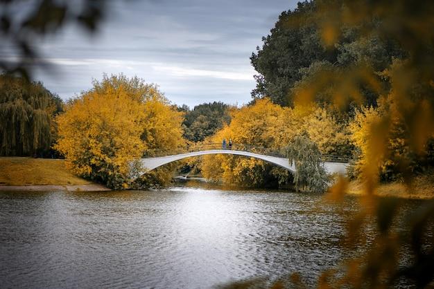 Золотая осень и мост через озеро в общественном парке Premium Фотографии