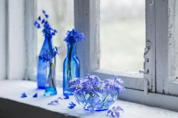 窓辺に青い春の花 Premium写真