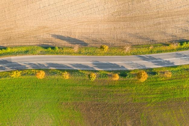 秋の夕暮れ時の緑の野原と黄色の木のある耕作地の間の道路。空のアスファルト高速道路または木の路地の空撮。 Premium写真