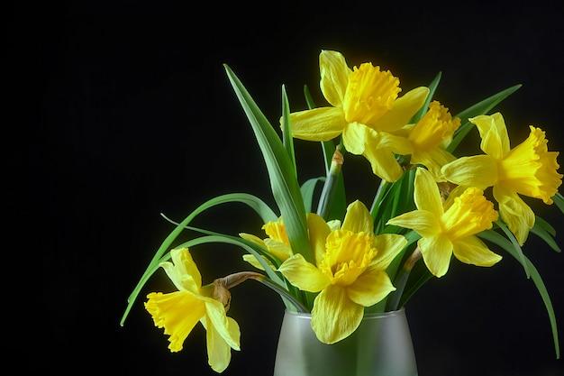 Желтый цветок нарцисса в стеклянной вазе с водой Premium Фотографии