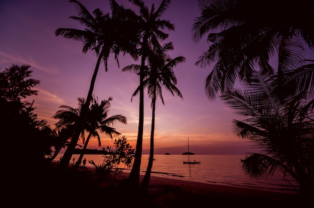 Красивый закат на пляже в тропиках. небо и океан Premium Фотографии