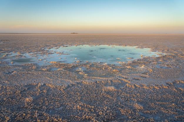 アフリカ、エチオピアのダナキルうつ病におけるアセール湖の塩原の泡立つ池 Premium写真