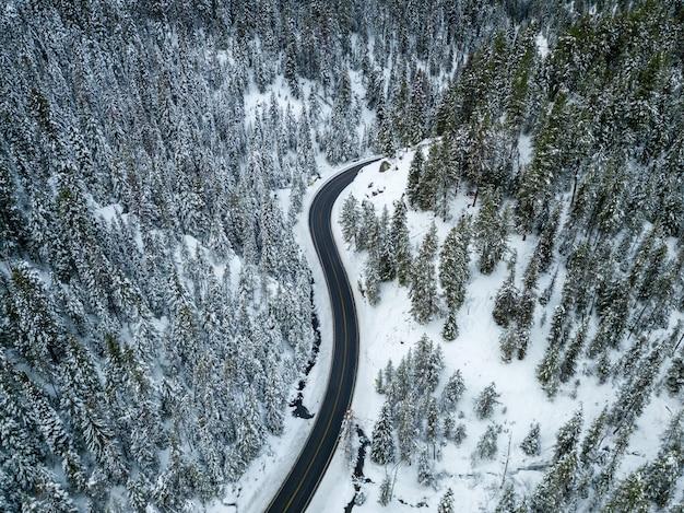 Воздушный выстрел из дороги возле сосны в снегу Бесплатные Фотографии