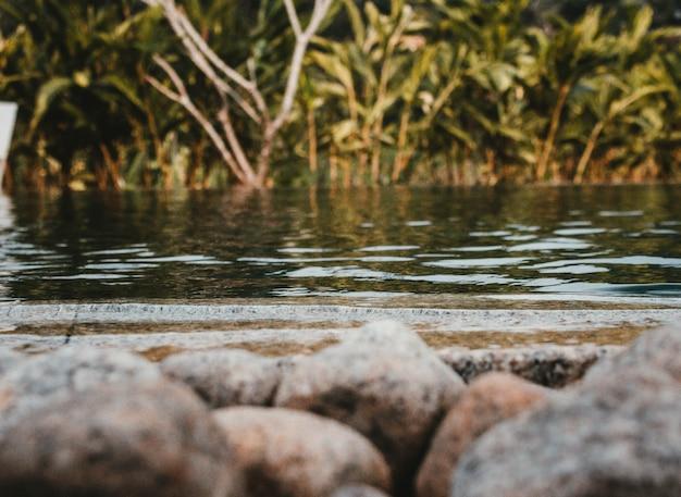 Выстрел из озера с камнями в передней и зелени Бесплатные Фотографии