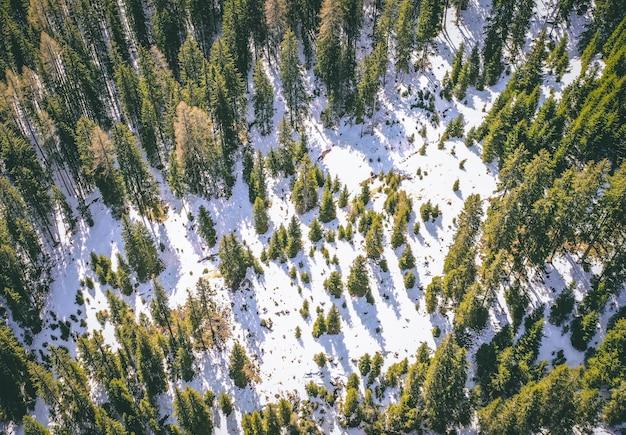 冬に背の高い緑の木々と美しい雪に覆われた森の空中ショット 無料写真