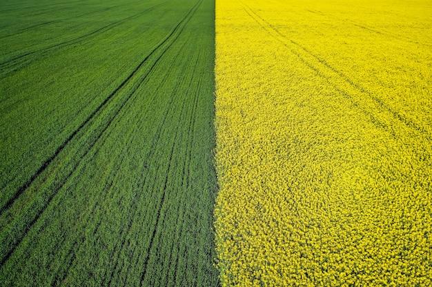 ドローンで撮影した美しい農業半分緑半分黄色の芝生フィールド 無料写真
