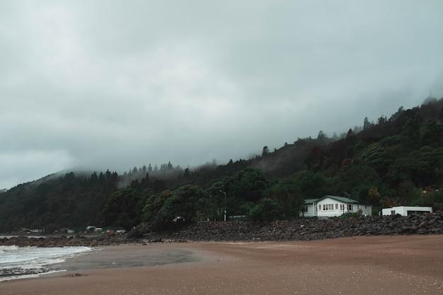 背後にある美しい森と霧の海岸で孤独な家の美しいショット-ホラーコンセプト 無料写真
