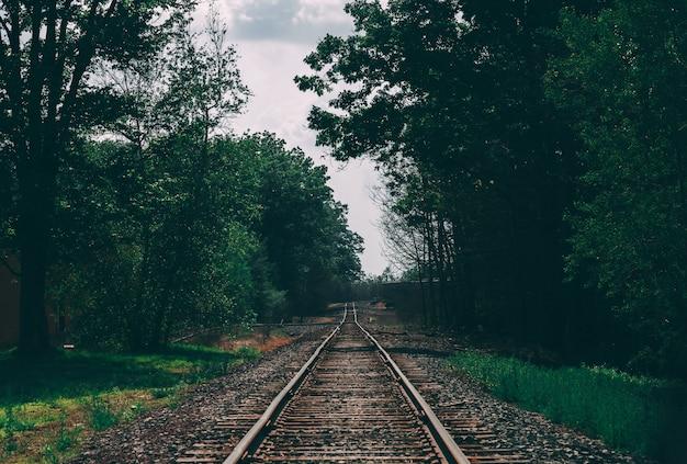 Красивая съемка железнодорожной колеи в окружении деревьев Бесплатные Фотографии