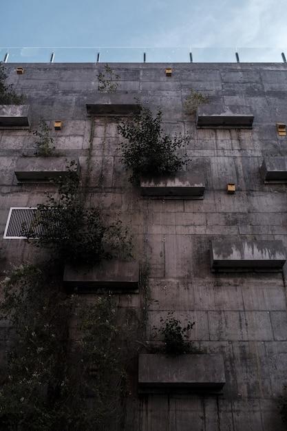 Высокое здание с растениями на нем Бесплатные Фотографии