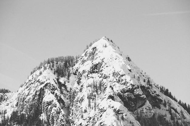雪に覆われた高山の美しい黒と白のショット 無料写真