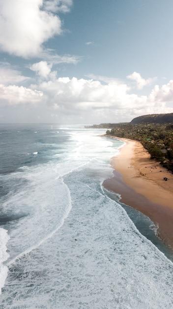 白い雲と澄んだ青い空の下で木々に囲まれた砂浜の海岸で海水 無料写真