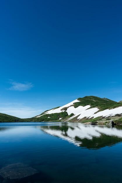 Вертикальная съемка снежной и покрытой лесом горы около воды с голубым небом на заднем плане Бесплатные Фотографии