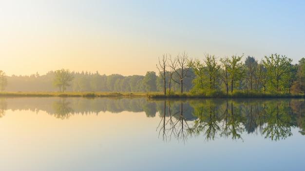 青空の下で海岸に緑の葉の木を反映した水のワイドショット 無料写真