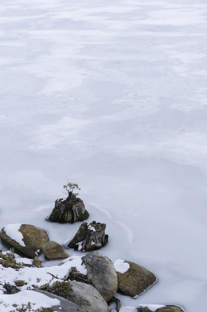 凍った水に雪に覆われた岩の垂直方向のショット 無料写真