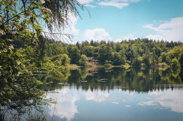 緑の木々と曇り空の下の孤立した家に囲まれた美しい湖の風光明媚なショット 無料写真