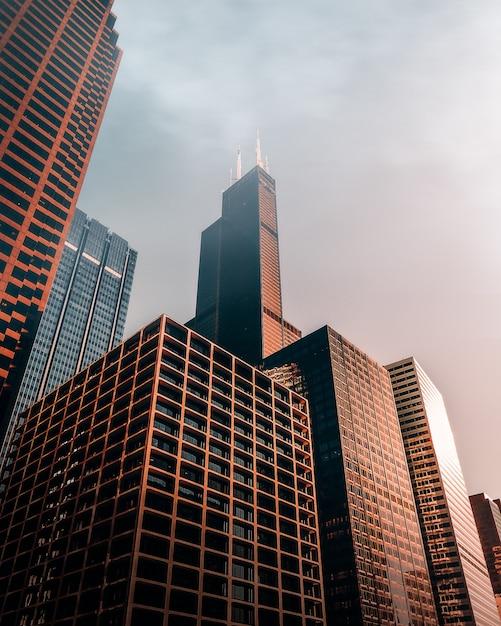 茶色の高層ビル 無料写真