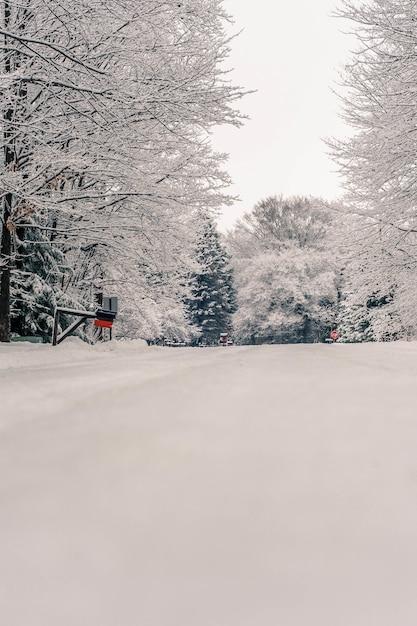 ペンシルベニア州の雪に覆われた田舎の素晴らしい景色の美しいショット 無料写真