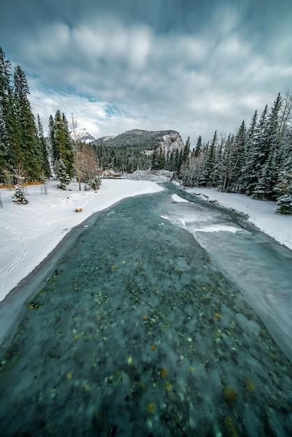森の横にある雪で覆われた地域で凍ったターコイズブルーの川の垂直ショット 無料写真