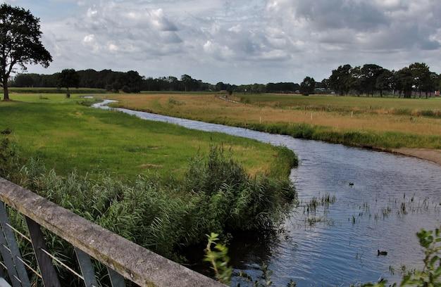 緑の野原を流れる川の風景ショット 無料写真