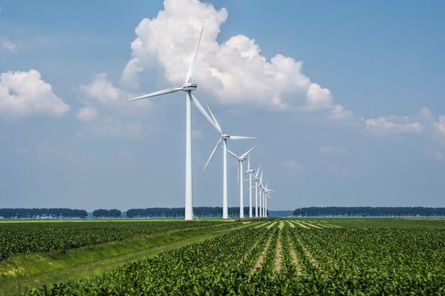 オランダでキャプチャされた芝生の覆われたフィールド上の風力タービンの美しい景色 無料写真