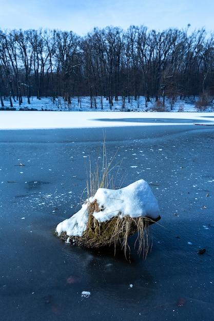 マクシミール、ザグレブ、クロアチアの凍った湖で雪で覆われた木の部分の垂直方向のショット 無料写真