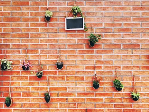 Различные виды растений в подвесных корзинах на фоне кирпичной стены Premium Фотографии