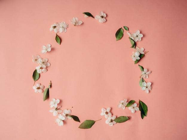Рамка с вишневыми цветами, предпосылка цветка весны, взгляд сверху, плоское положение, рамка, космос экземпляра. Premium Фотографии