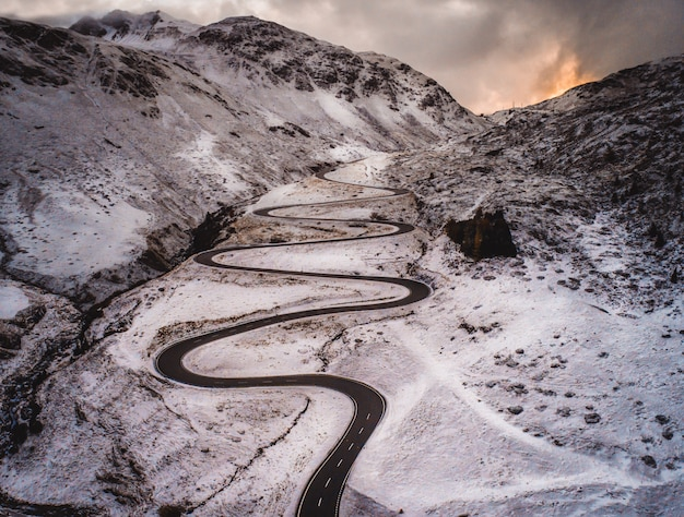 Лесной массив и дорога со снегом Premium Фотографии