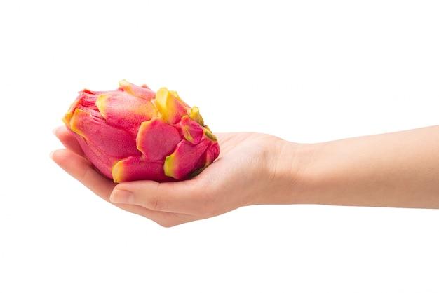 甘いおいしいドラゴンフルーツまたは分離された女性の手でピタヤ。 Premium写真