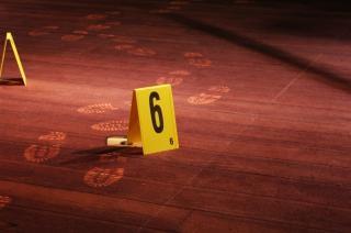 現場調査、寄木細工 無料写真