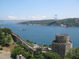 イスタンブールボスポラス海峡と要塞ルメリ 無料写真