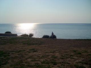 トルコ、トルコ、水からの写真 無料写真