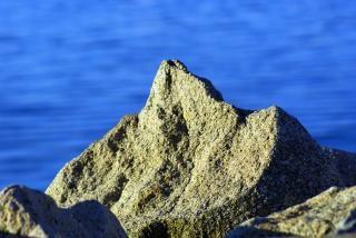 Океана рок, побережье Бесплатные Фотографии
