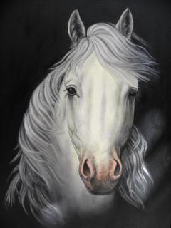 Лошадь картина Бесплатные Фотографии