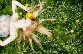 花、なだめる 無料写真