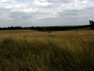 ミズーリ州の牧草地 無料写真
