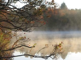 霧の深い朝湖 無料写真