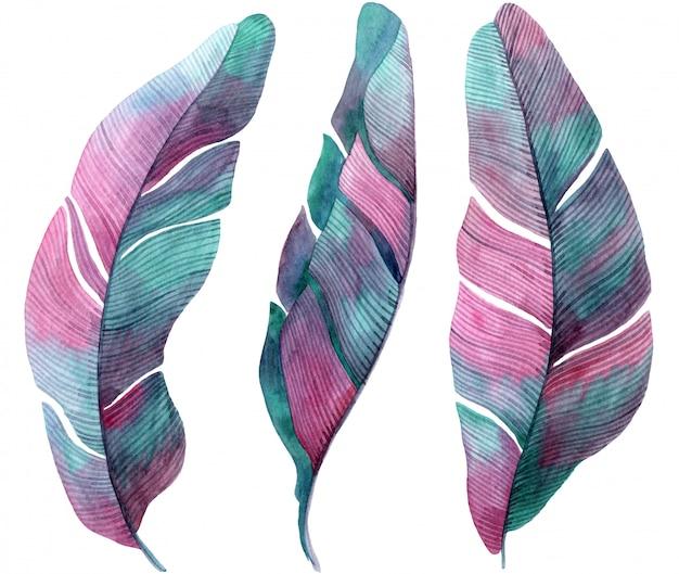 パームピンクとライラックの葉の水彩イラスト。 Premium写真