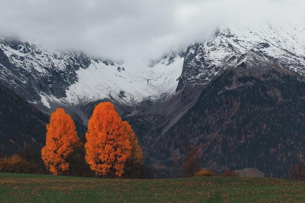 山の風景 無料写真