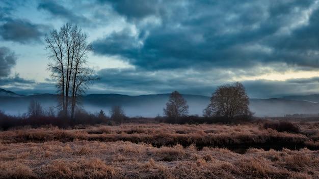 曇り空のある冬景色 無料写真