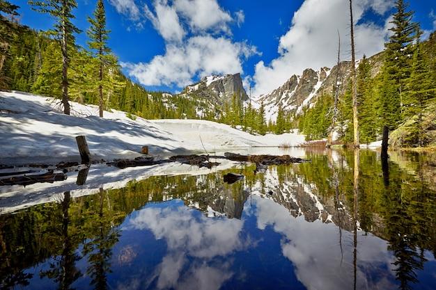 Тиндалл-крик в национальном парке скалистых гор Premium Фотографии