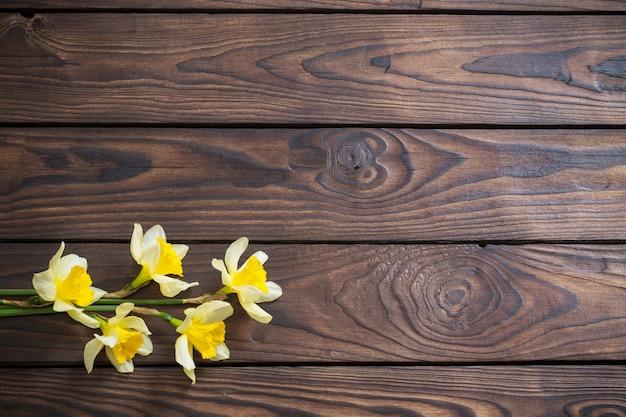 Желтый нарцисс на темном деревянном фоне Premium Фотографии