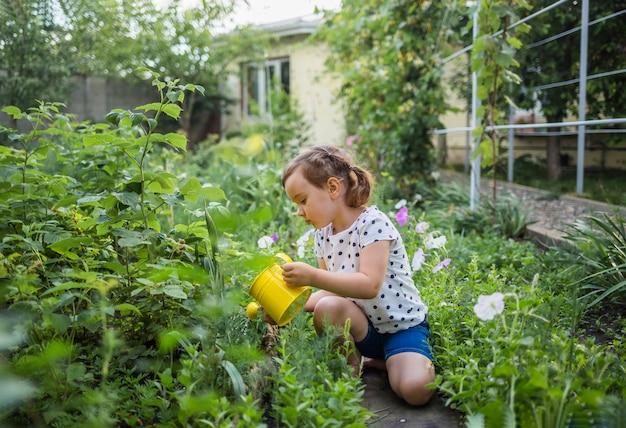 小さな女の子のアシスタントが庭に座って、黄色のじょうろで作物に水をまく Premium写真